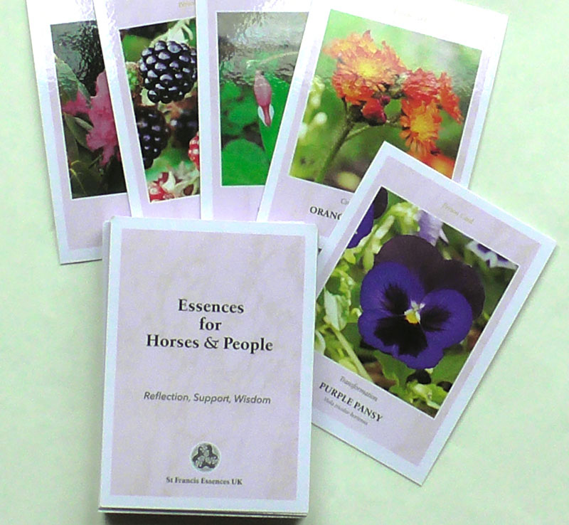 Wisdom Cards for People